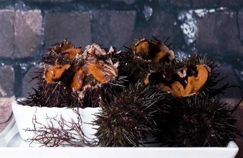 comer erizos de mar en Dénia 2